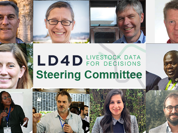 LD4D Steering Committee